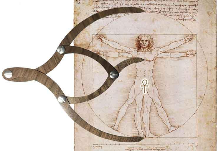 ویتروویوس زیبایی و نسبت طلایی