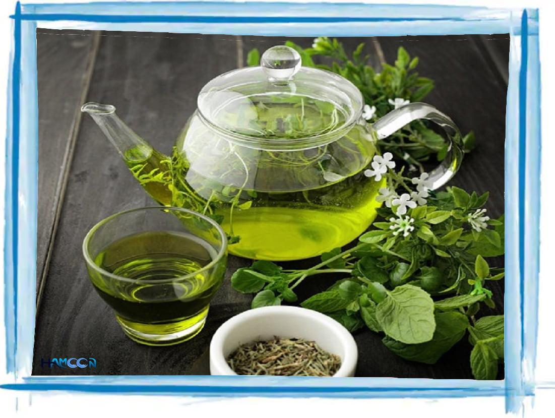 چای سبز چربی سوزی